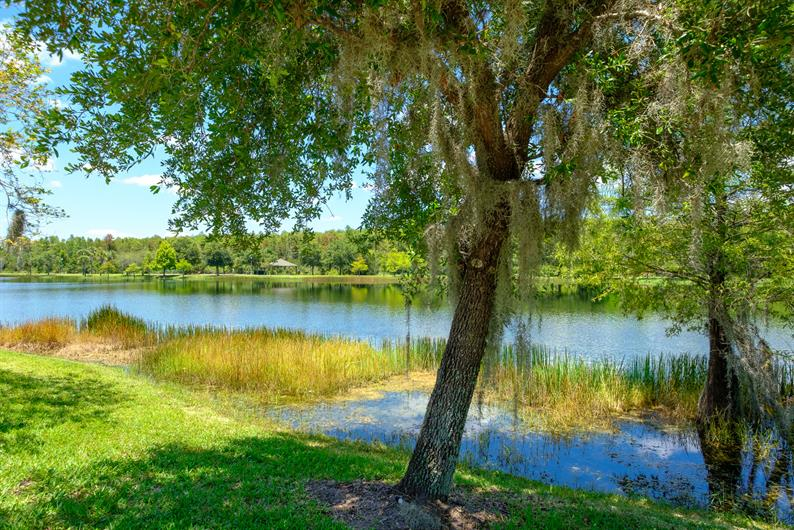 Seminole County, Florida's Natural Choice