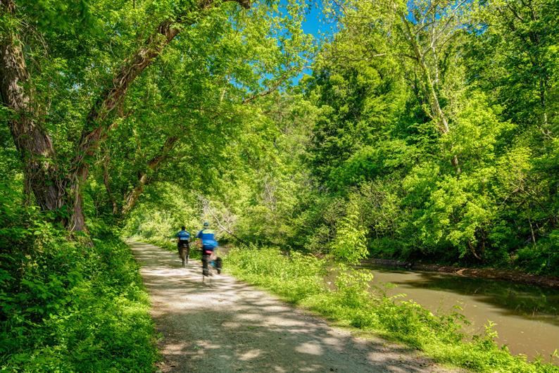 HIKE OR BIKE THE MANY GORGEOUS TRAILS NEARBY