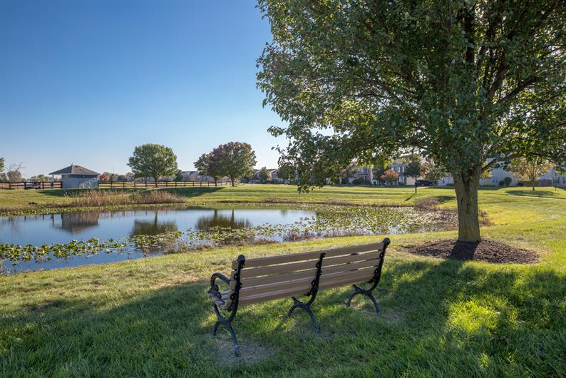 Community Sidewalks, Trails, and Pond Views