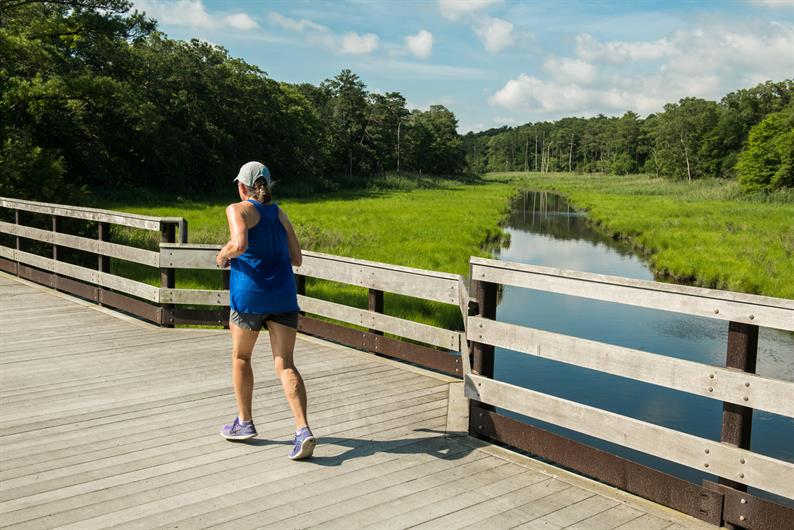 Stay Active with Many Stunning, Local Trails