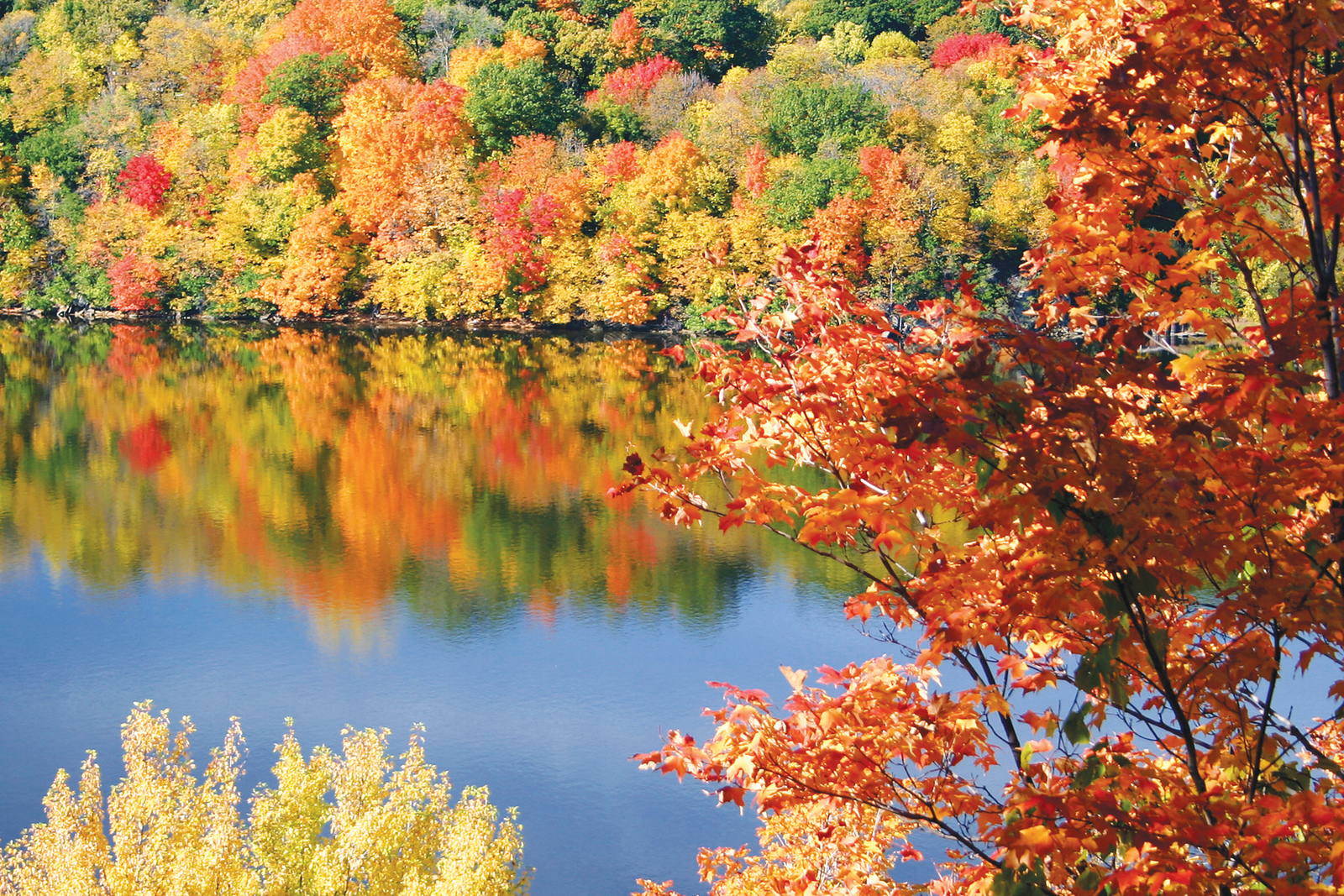 Enjoy the wonderful fall foliage and lake views at this beautiful Morgantown community.