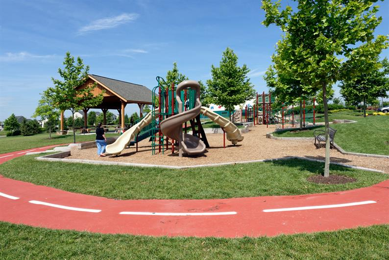Best Playground in the county