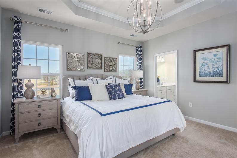 Suite Dreams