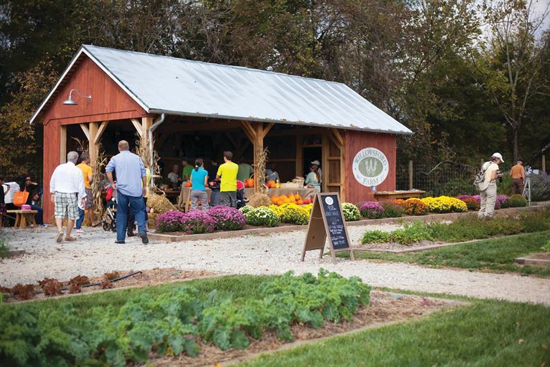 Farm-to-Table Community