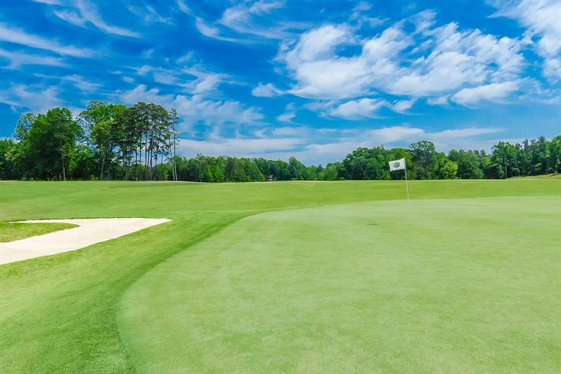 Pine Island Country Club and Carolina Golf Club are Nearby