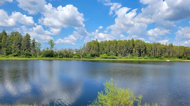 Pond and Conservation View Homesites Available