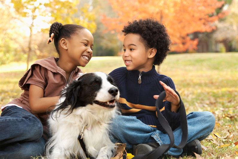 Fall is in the air, weekends enjoying time with family and friends including your pets!