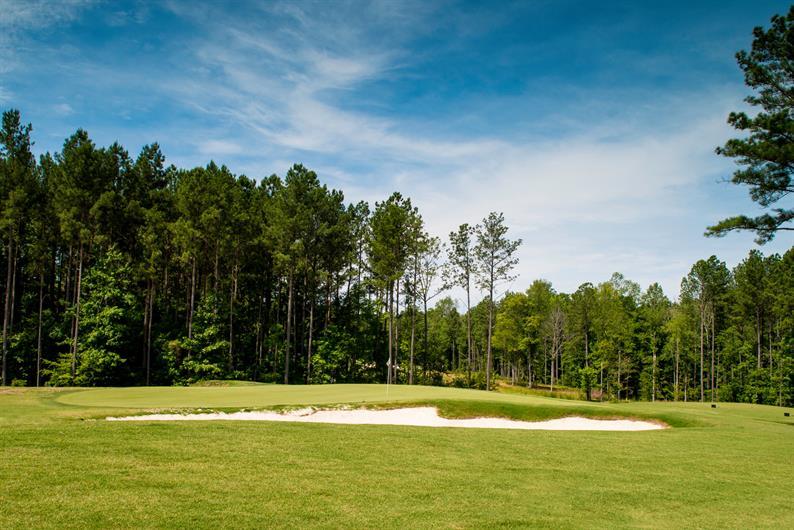 Golf in your own neighborhood