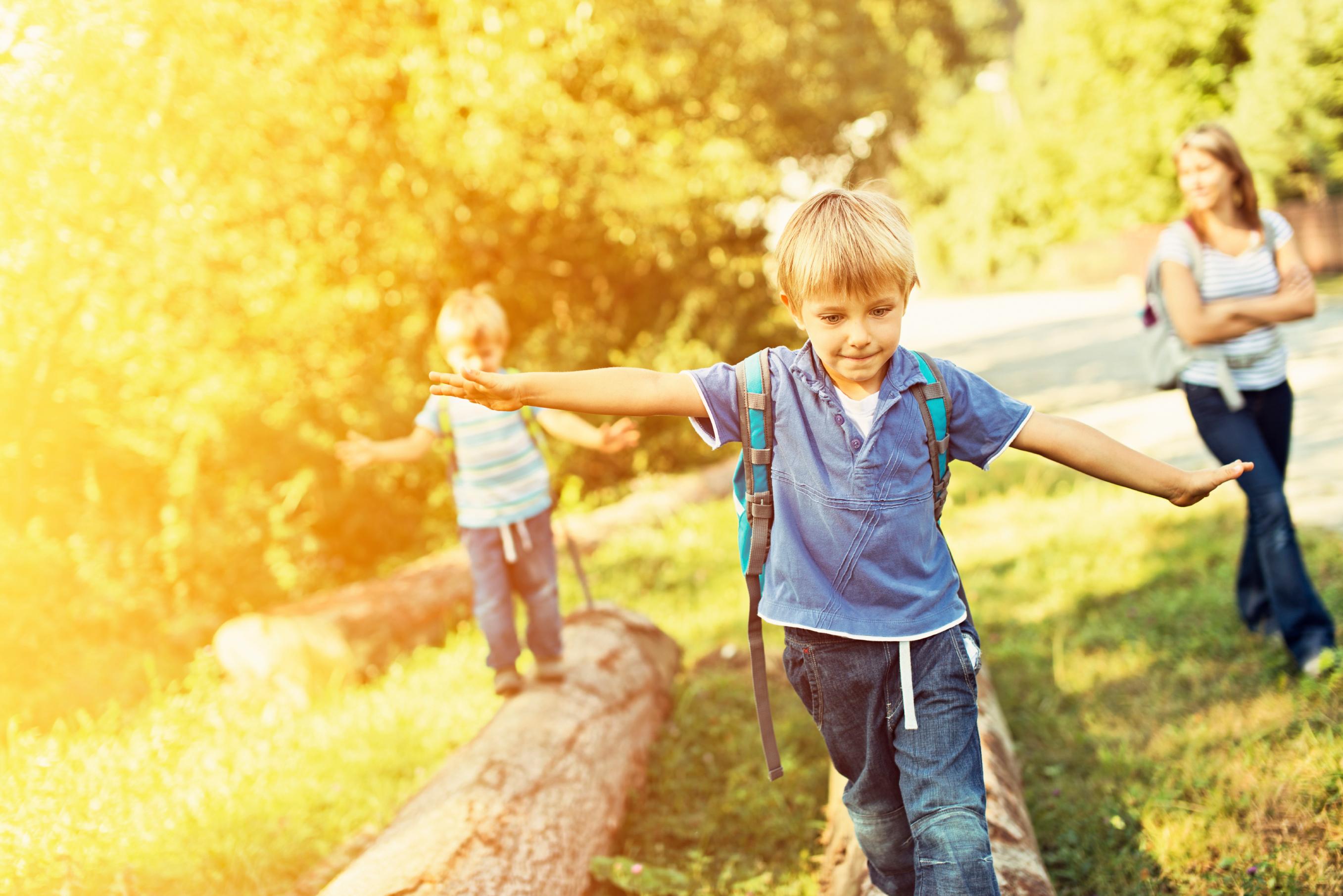 Cypress Preserve Single Family Homes