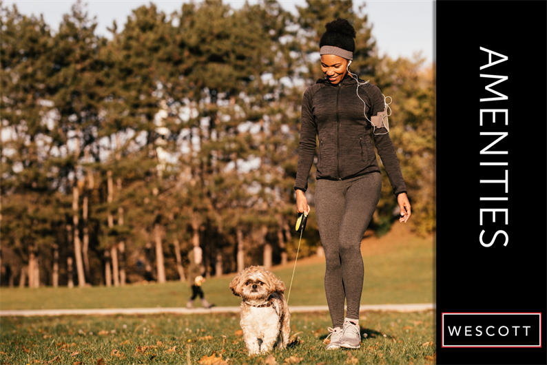 Active Life for You and Your Pets