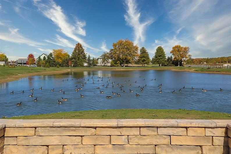 ENJOY THE PEACEFUL ATMOSPHERE AND THE BEAUTIFUL POND VIEWS