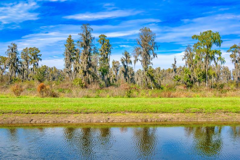 Homesites with Nature Views