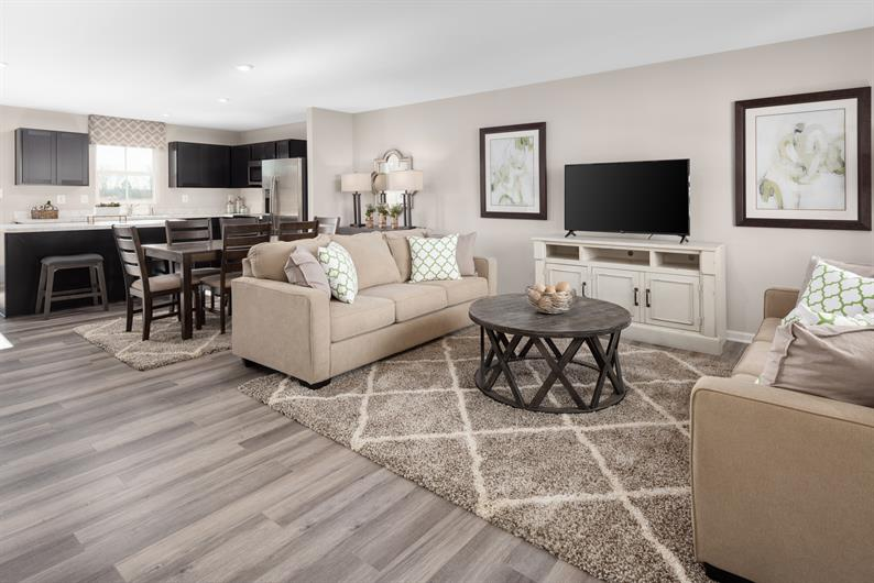 GREAT SPACES FOR HOSTING AND FAMILY MOVIE NIGHT