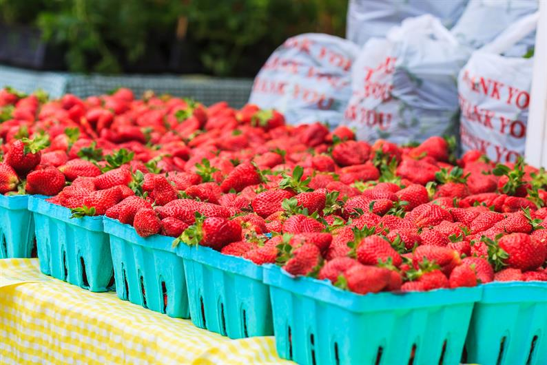 Walking distance to fresh fruits and veggies at Mauldin's Open Air Market