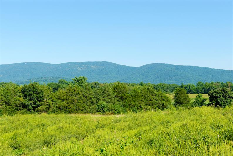 Limited number of mountain view homesites available