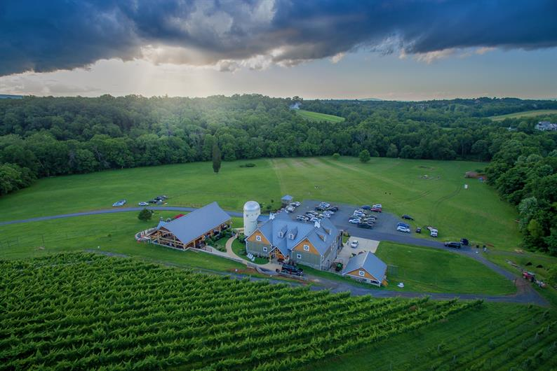 LOUDOUN COUNTY IS WINE COUNTRY