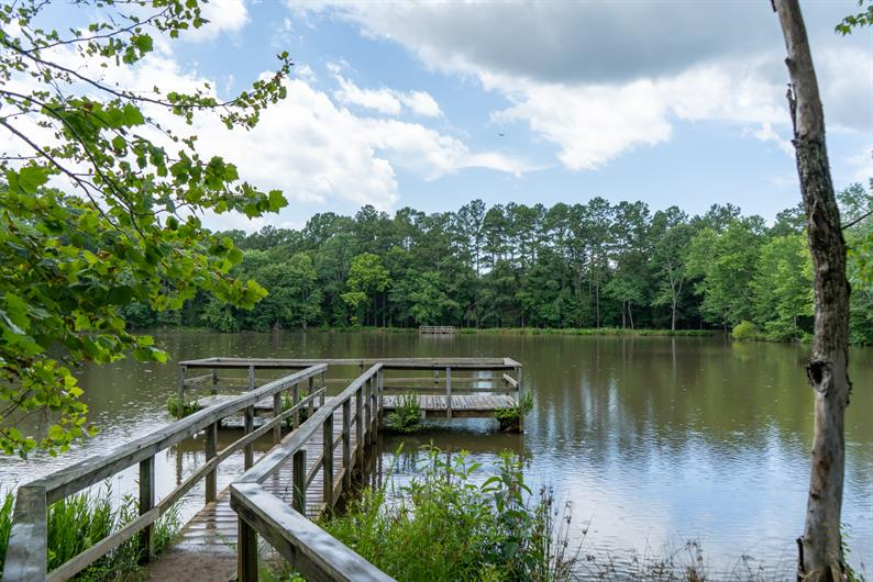 FISHING, HIKING TRAILS AND PICNICS ARE ONLY A FEW MINUTES FROM HOME
