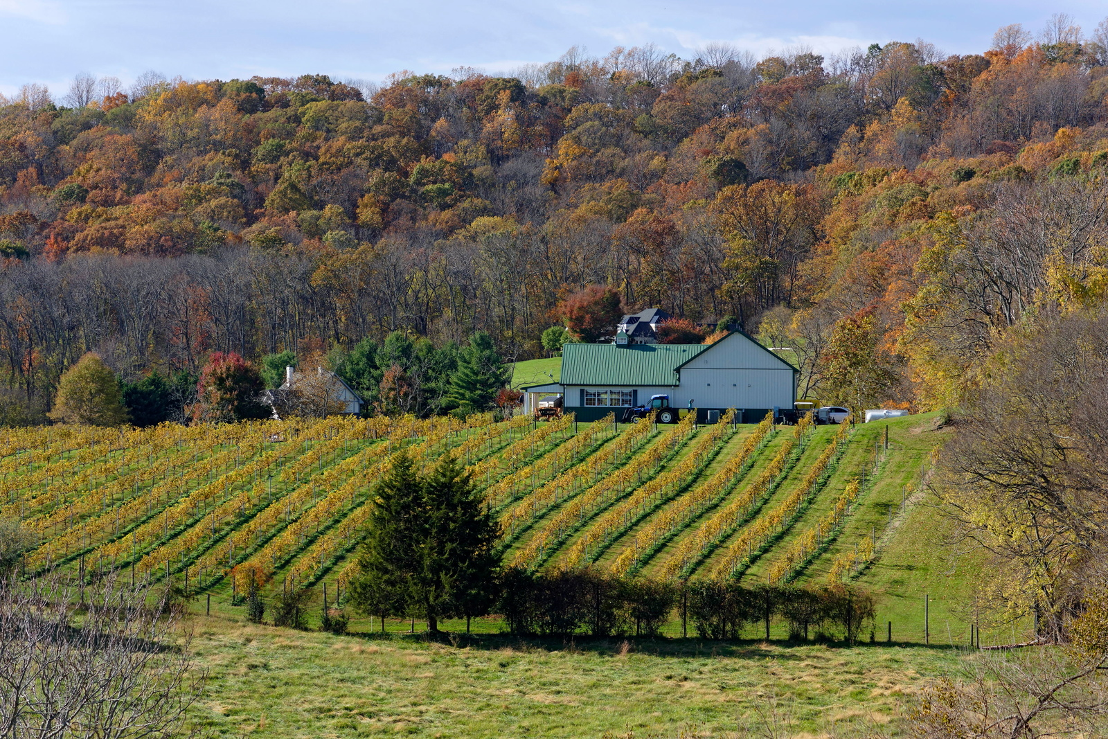 No other Washington-area destination offers the immaculate mountain-side views and rolling hills like Fauquier County.