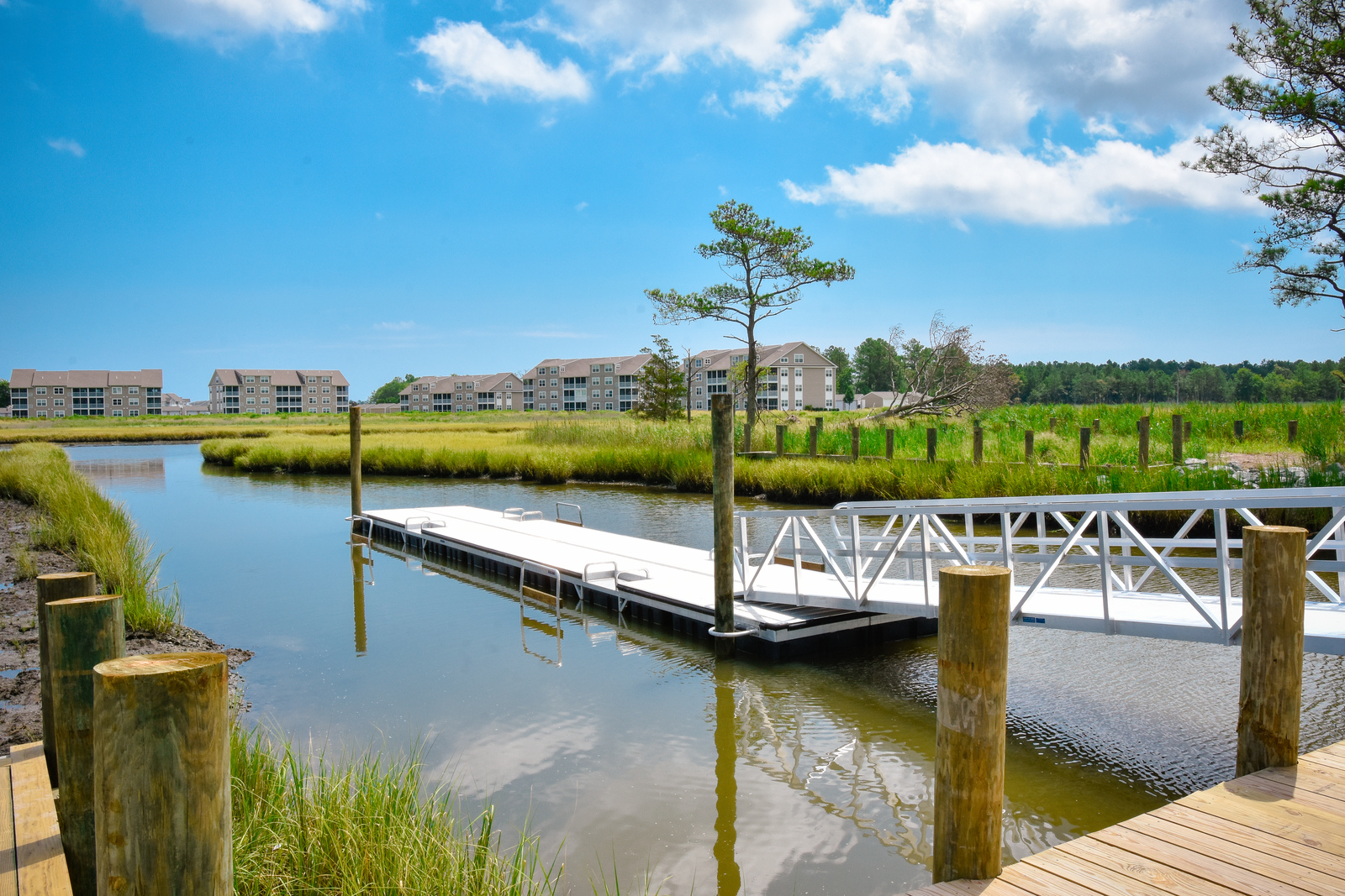 Bay Forest has a spectacular community marina with day slips, kayak and canoe launch