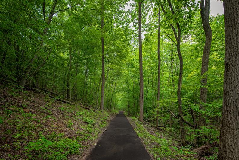 RUN, WALK, EXPLORE THE COMMUNITY NATURE TRAILS