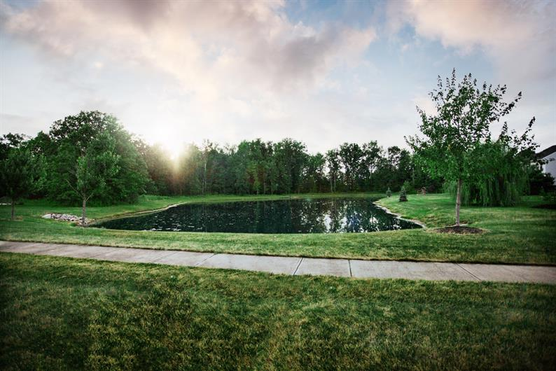 choose from SCENIC TREE-LINED and pond view HOMESITES