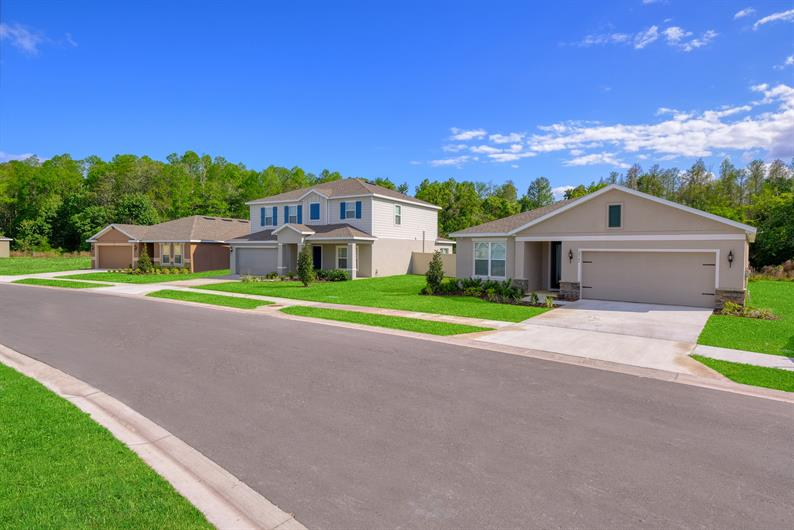 Single-Family Homes in Pasco County