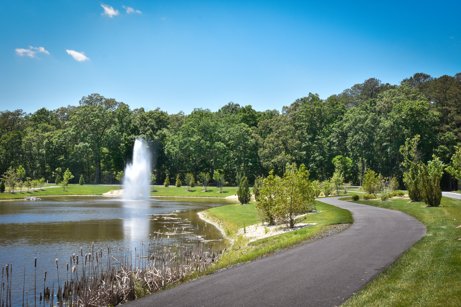 Take in the surrounding woodlands on walking and biking trails throughout the community
