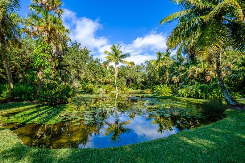 Explore McKee Botanical Gardens in North Vero Beach