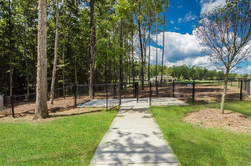 Enjoy a Dog Park, Picnic Area, and More at Crooked Creek Park