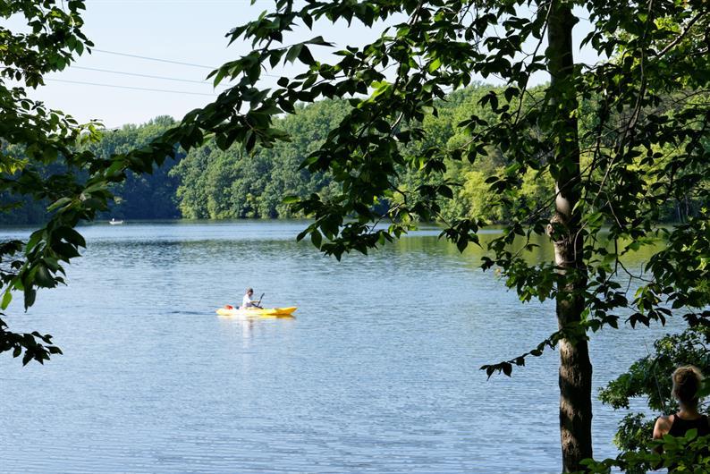 kayak, fish, and more