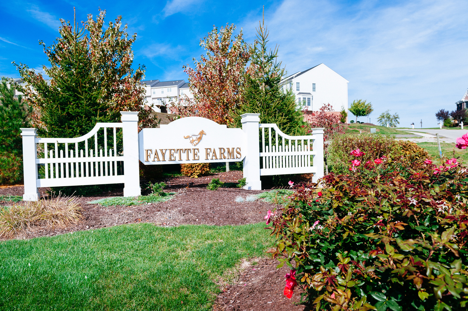 Fayette Farms Single Family Homes