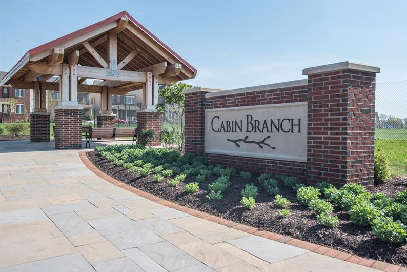 welcome to cabin branch